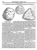 762. oldal