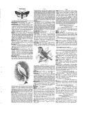 6157. oldal