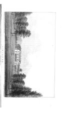 186. oldal