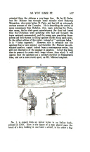 517. oldal