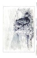 2. oldal