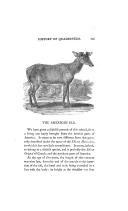 125. oldal