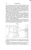 386. oldal