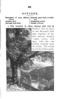 221. oldal