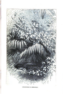 395. oldal