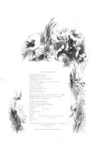 8. oldal