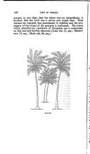 236. oldal