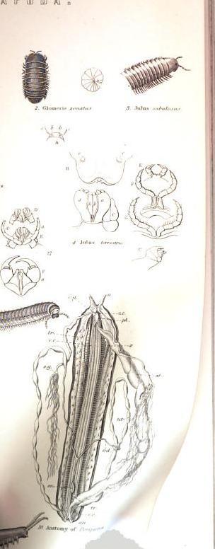 [merged small][merged small][merged small][merged small][merged small][merged small][merged small][merged small][graphic]