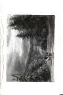 304. oldal