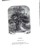 11. oldal