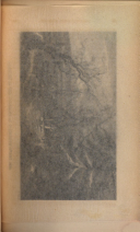 36. oldal