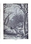 323. oldal