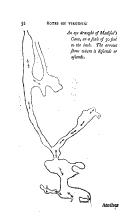 32. oldal