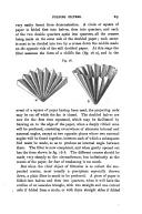 29. oldal